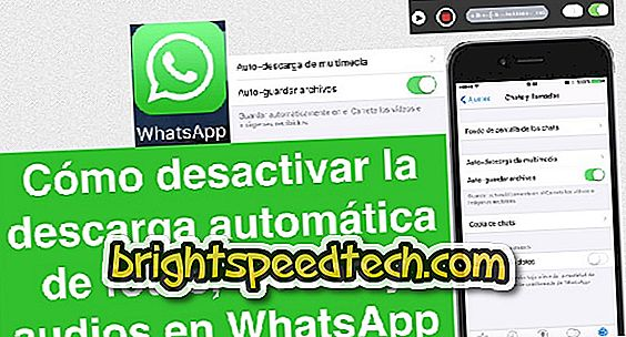 Come disabilitare il download automatico di foto e video su WhatsApp
